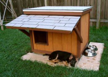 Строительство будки для немецкой овчарки