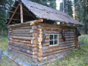 Строительство сруба лесной избы