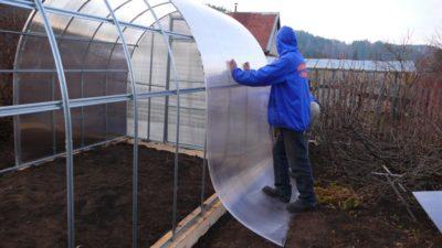 Строительство теплицы из сотового поликарбоната