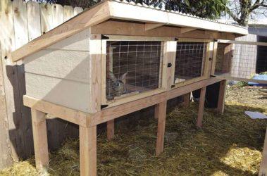 Строительство крольчатника своими руками